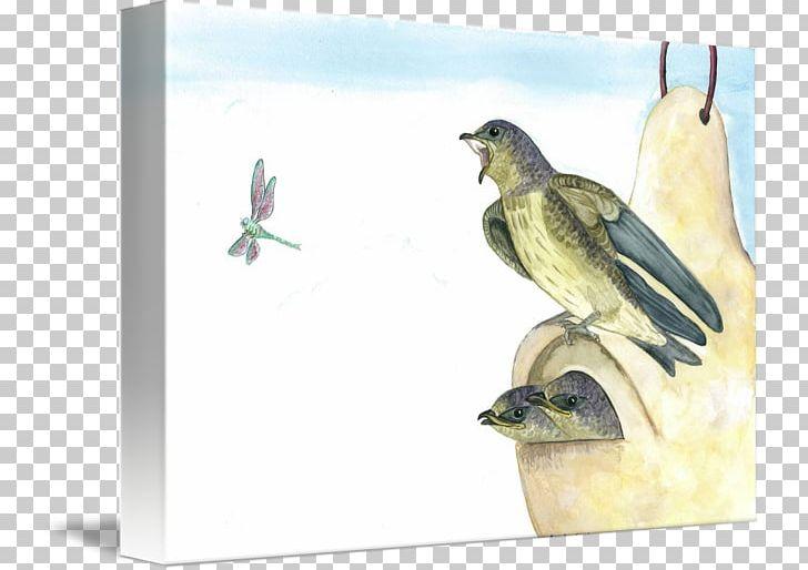 Finches Beak Fauna PNG, Clipart, Beak, Bird, Fauna, Finch.