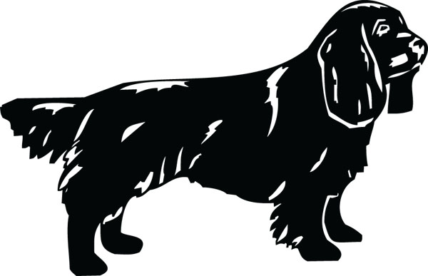 Sussex spaniel clipart.