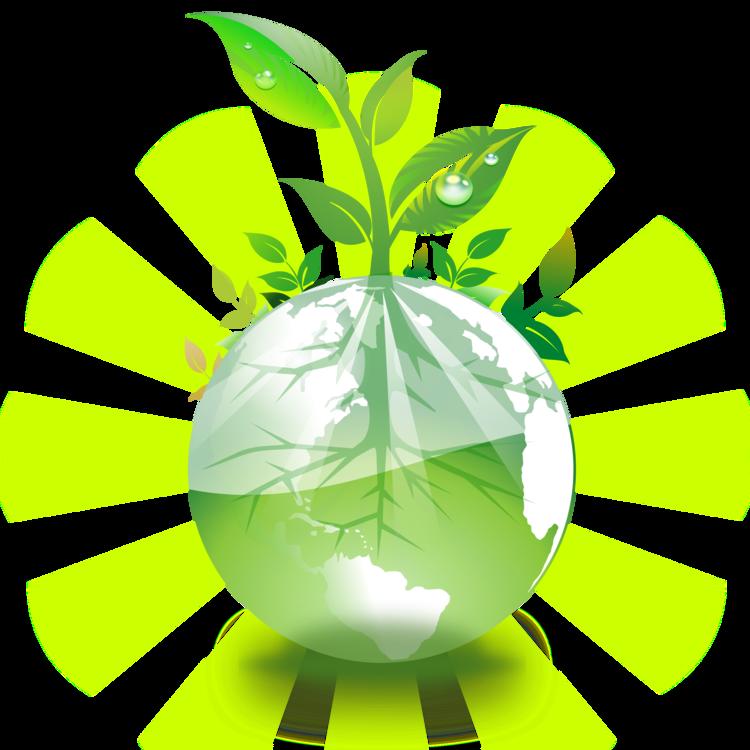Plant,Leaf,Computer Wallpaper Clipart.