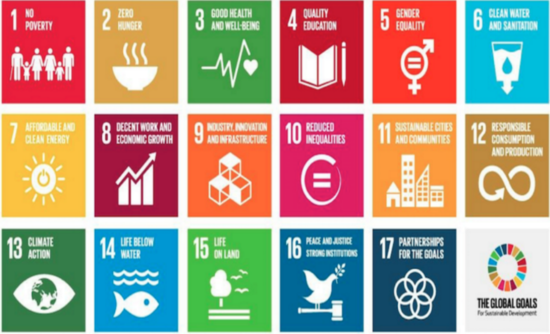 How business can act on the Sustainable Development Goals.