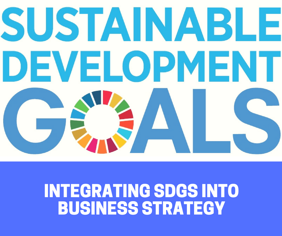 Integrating Sustainable Development Goals into Business.