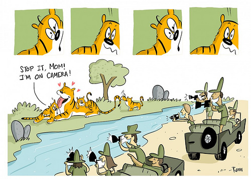 Stop! Don't Shoot Like that — A Guide to Ethical Wildlife.