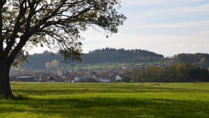 The 10 best Hikes in Weilen unter den Rinnen.