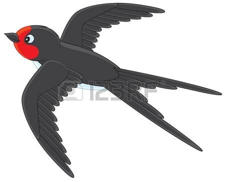 4,509 Swallow Stock Vector Illustration And Royalty Free Swallow.