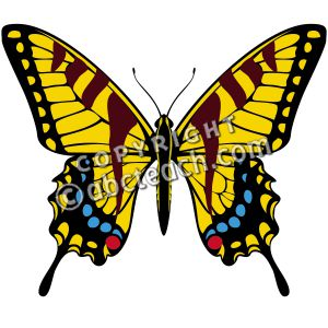 Swallowtail Butterfly Clip Art (41+).