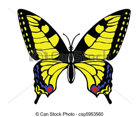 Vector Clipart of vector drawing butterfly swallowtail on white.