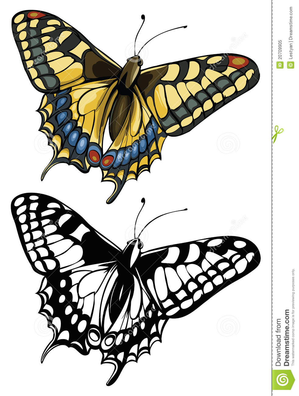 Vector Illustration Of A Butterfly Swallowtail(Pap Royalty Free.