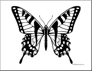 Clip Art: Butterfly: Tiger Swallowtail (coloring page).