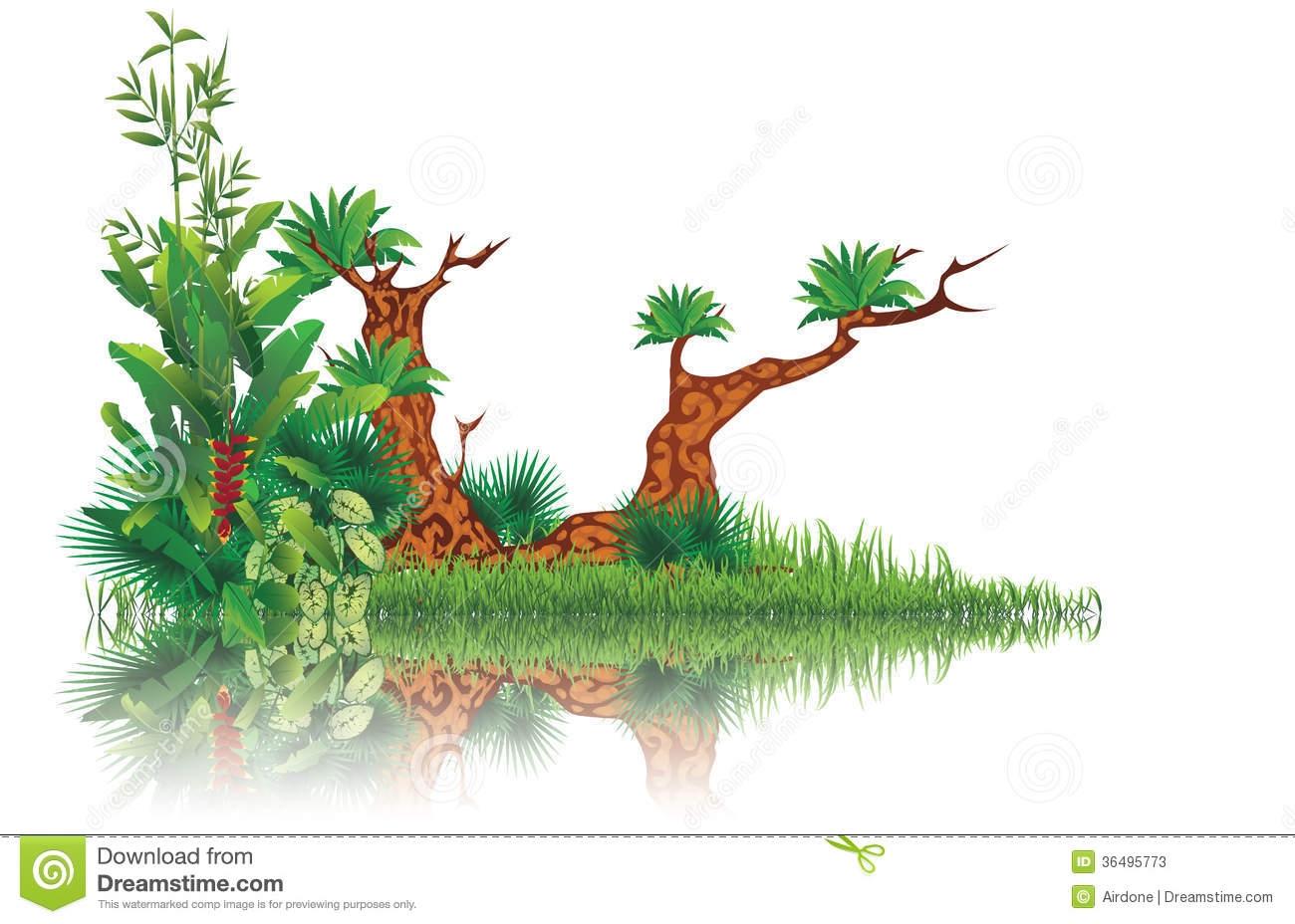Swamp Tree Clipart.