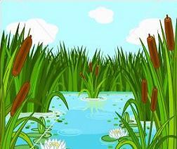 46+ Swamp Clip Art.