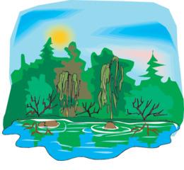 Download wetland png clipart Wetland Swamp Clip art.