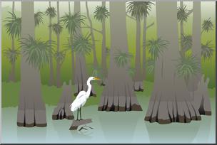 Clip Art: Everglades Cypress Swamp Color I abcteach.com.
