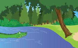 Alligator In Swamp Clipart.