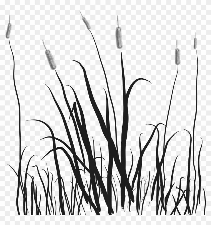 Swamp Clipart Grassland.