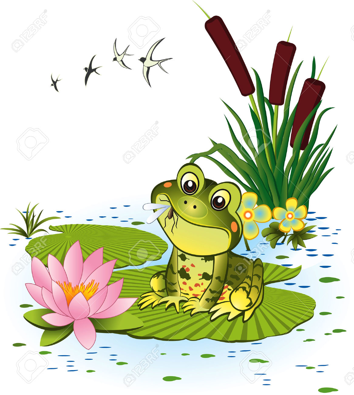 Cute Frog With Mosquito Royalty Free Cliparts, Vectors, And Stock.