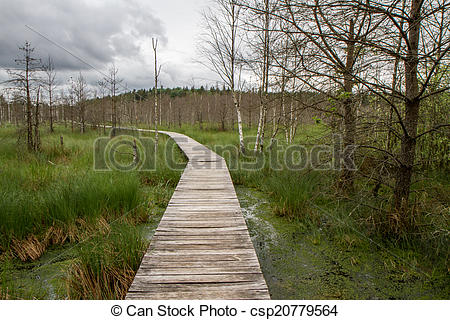 Stock Illustration of road to swamp.