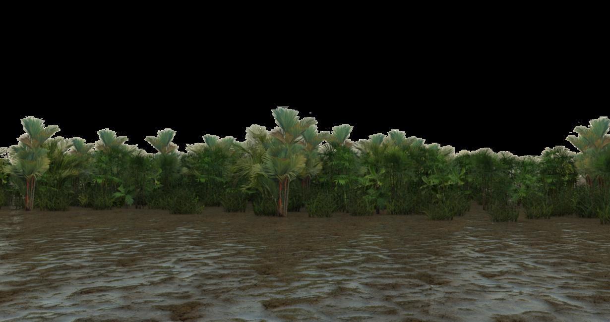 PNG Swamp Transparent Swamp.PNG Images..