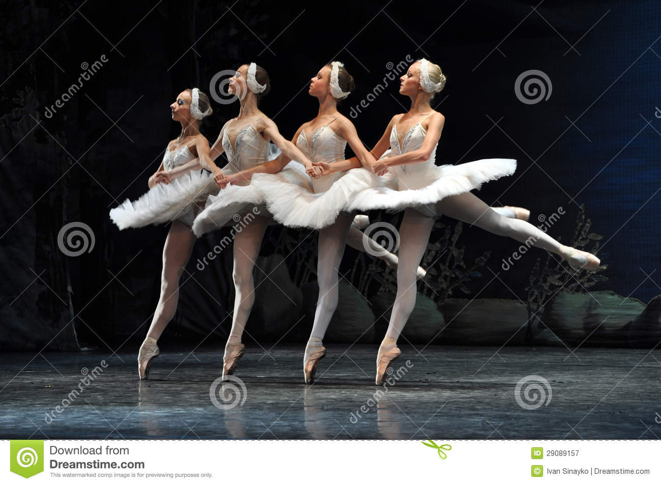 Little Swans, Swan Lake Ballet. Editorial Photography.