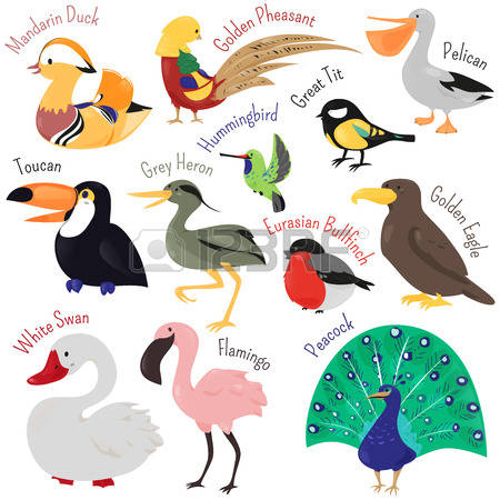 296 Swan Logo Stock Illustrations, Cliparts And Royalty Free Swan.