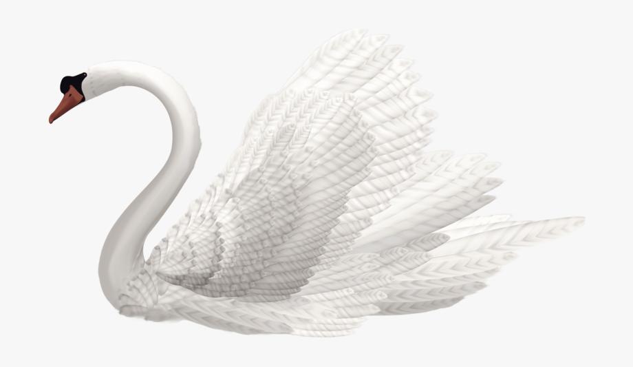 White Swan Image.