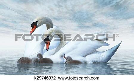 Clip Art of Swan family.