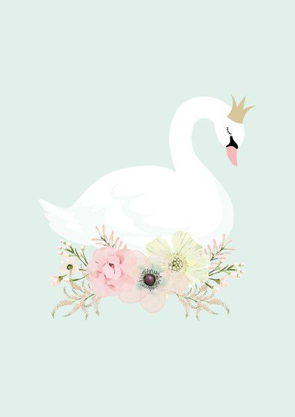 Swan Mirror Clipart 20 Free Cliparts Download Images On