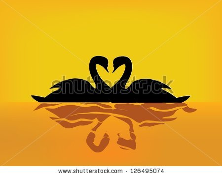 Two Swans In Love Stock Vectors, Images & Vector Art.