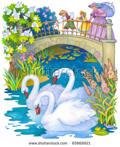 Baby Swan Stock Images, Royalty.