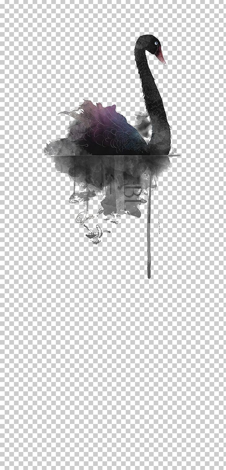 Black Swan Watercolor Painting PNG, Clipart, Animals.