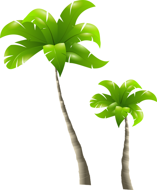 Free Picture Of A Palm Tree, Download Free Clip Art, Free.