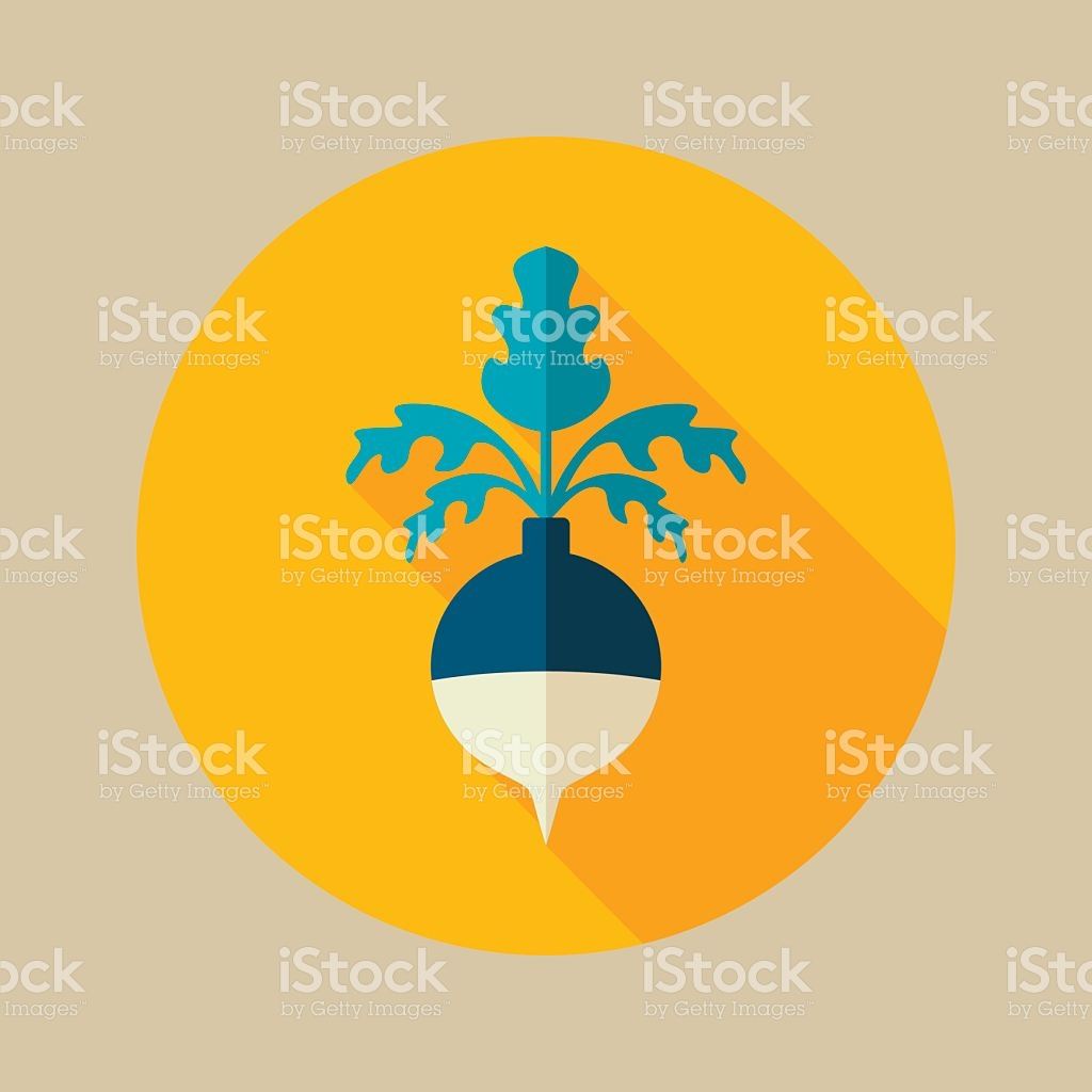 Rutabaga Or Swede Flat Icon Vegetable Root Vector stock vector art.