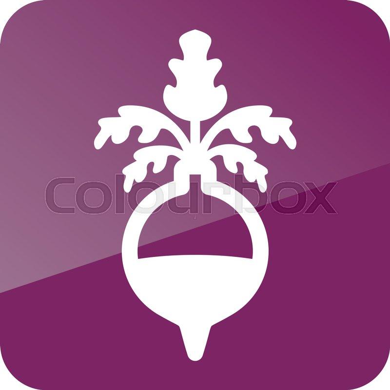 Rutabaga or Swede outline icon. Vegetable root vector illustration.