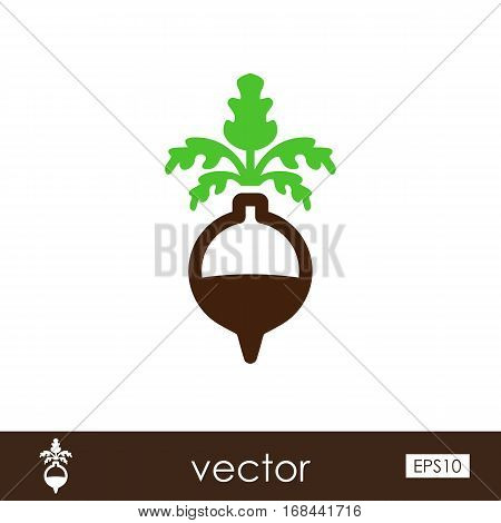 Rutabaga or Swede outline icon. Vegetable root vector illustration.