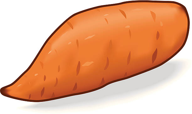 Sweet Potato Clipart.