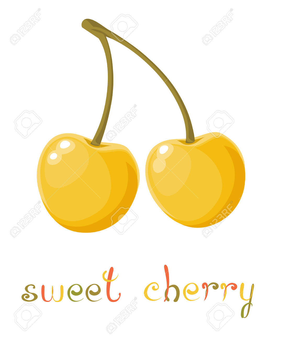 Yellow Sweet Cherry. Illustration Of Brunch Fresh Ripe Sweet.