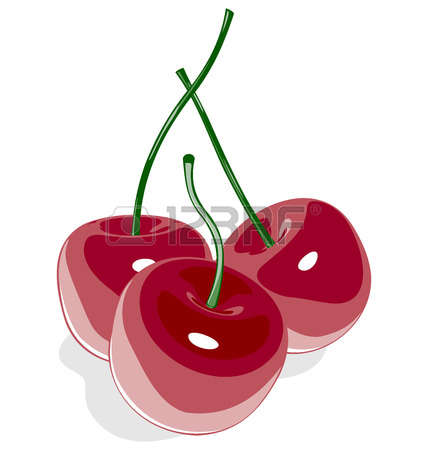 1,042 Sour Cherry Stock Vector Illustration And Royalty Free Sour.