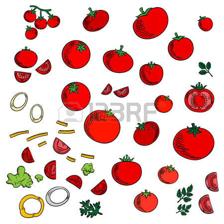 29,388 Sweet Cherry Stock Vector Illustration And Royalty Free.