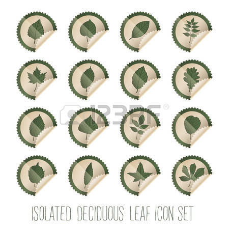 170 Sweet Chestnut Cliparts, Stock Vector And Royalty Free Sweet.
