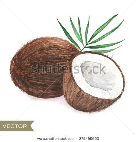 Sweet Coconut Stock Vectors & Vector Clip Art.