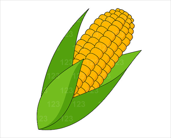 Sweet Corn Clipart.