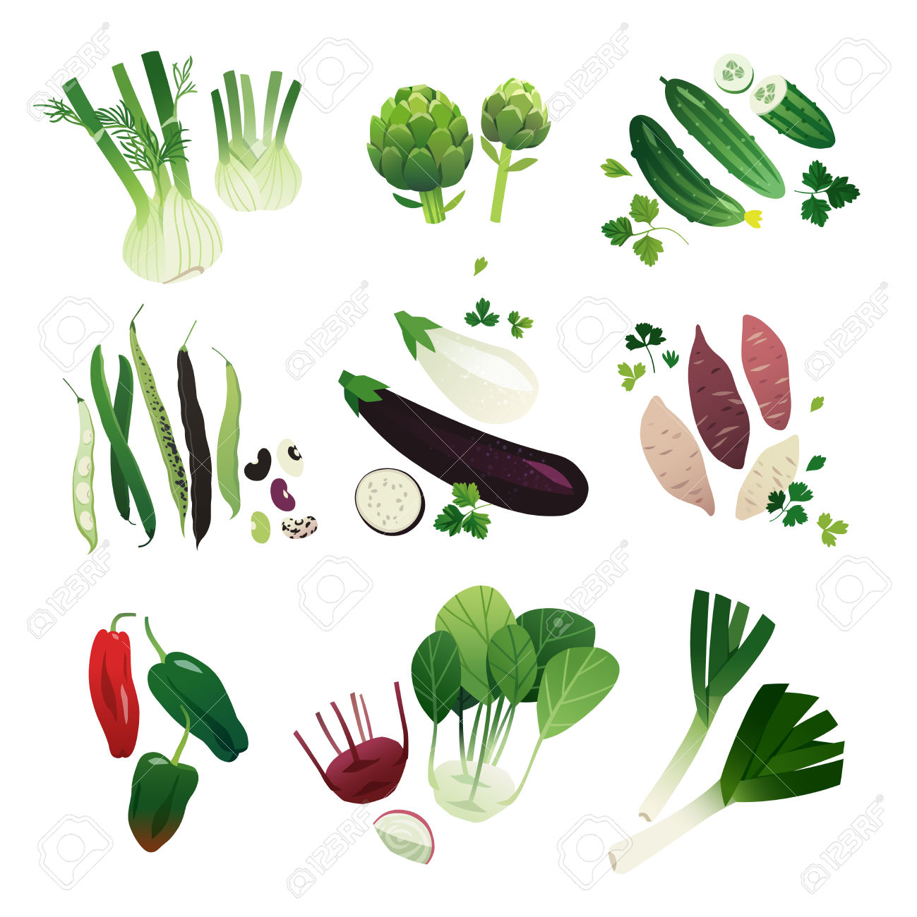 Collection Of Clip Art Vegetable Illustrations: Fennel, Artichoke.