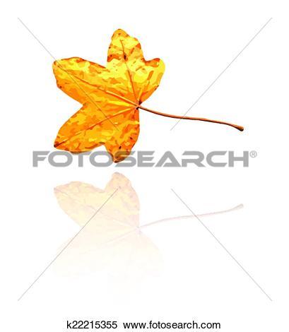Clipart of sweet gum leaf k22215355.