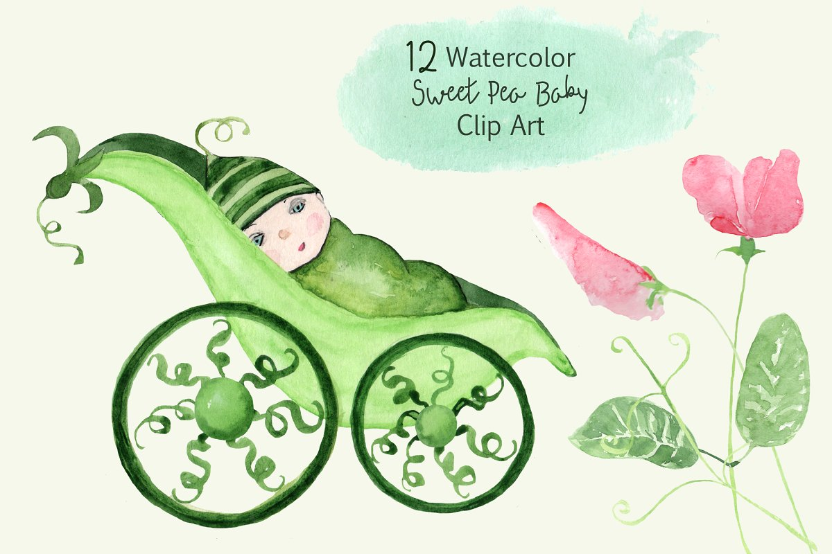 12 Watercolor Sweet Pea Baby ClipArt.