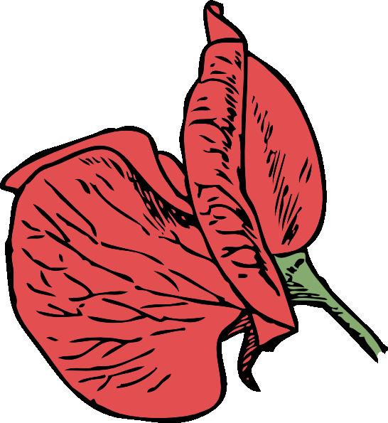 Sweet Pea Flower Clip Art.