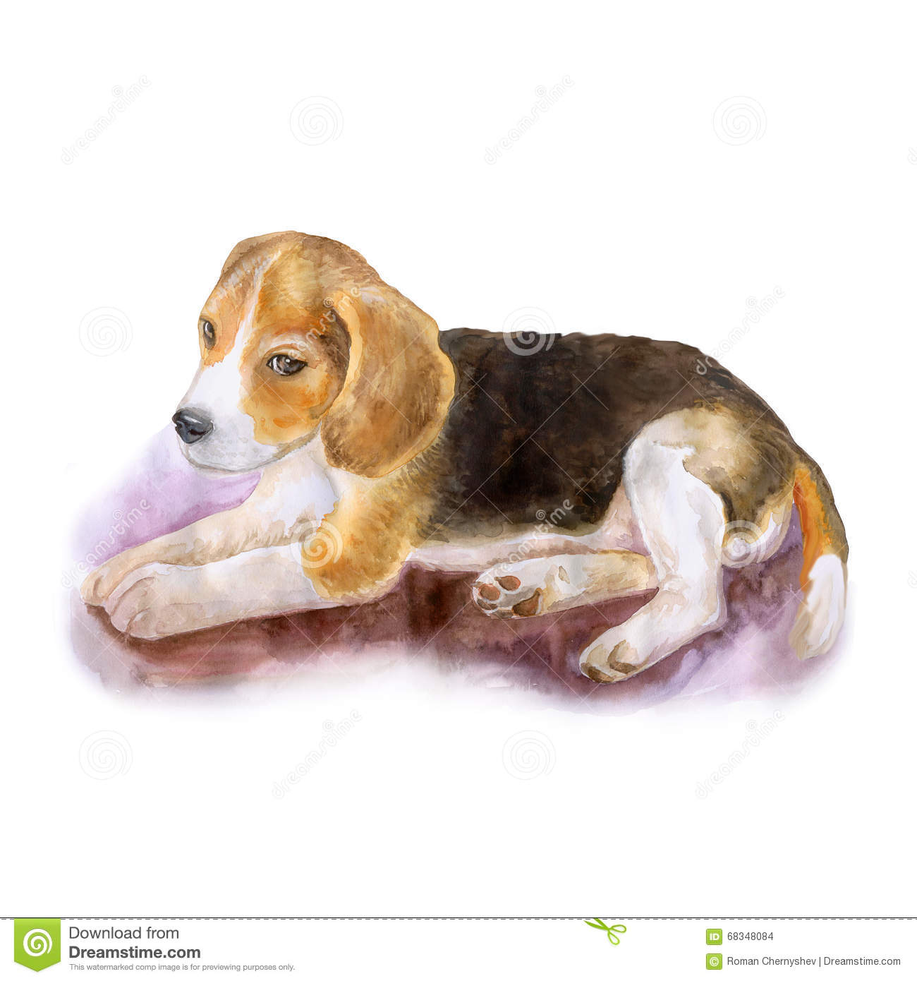 Watercolor Portrait Of Popular English Beagle Dog On White.