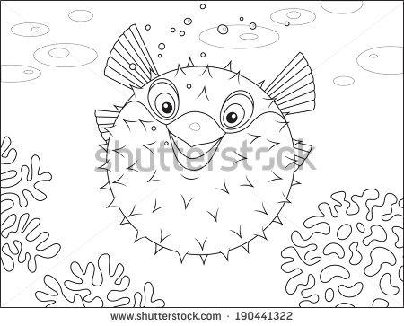 Swellfish Stock Photos, Royalty.
