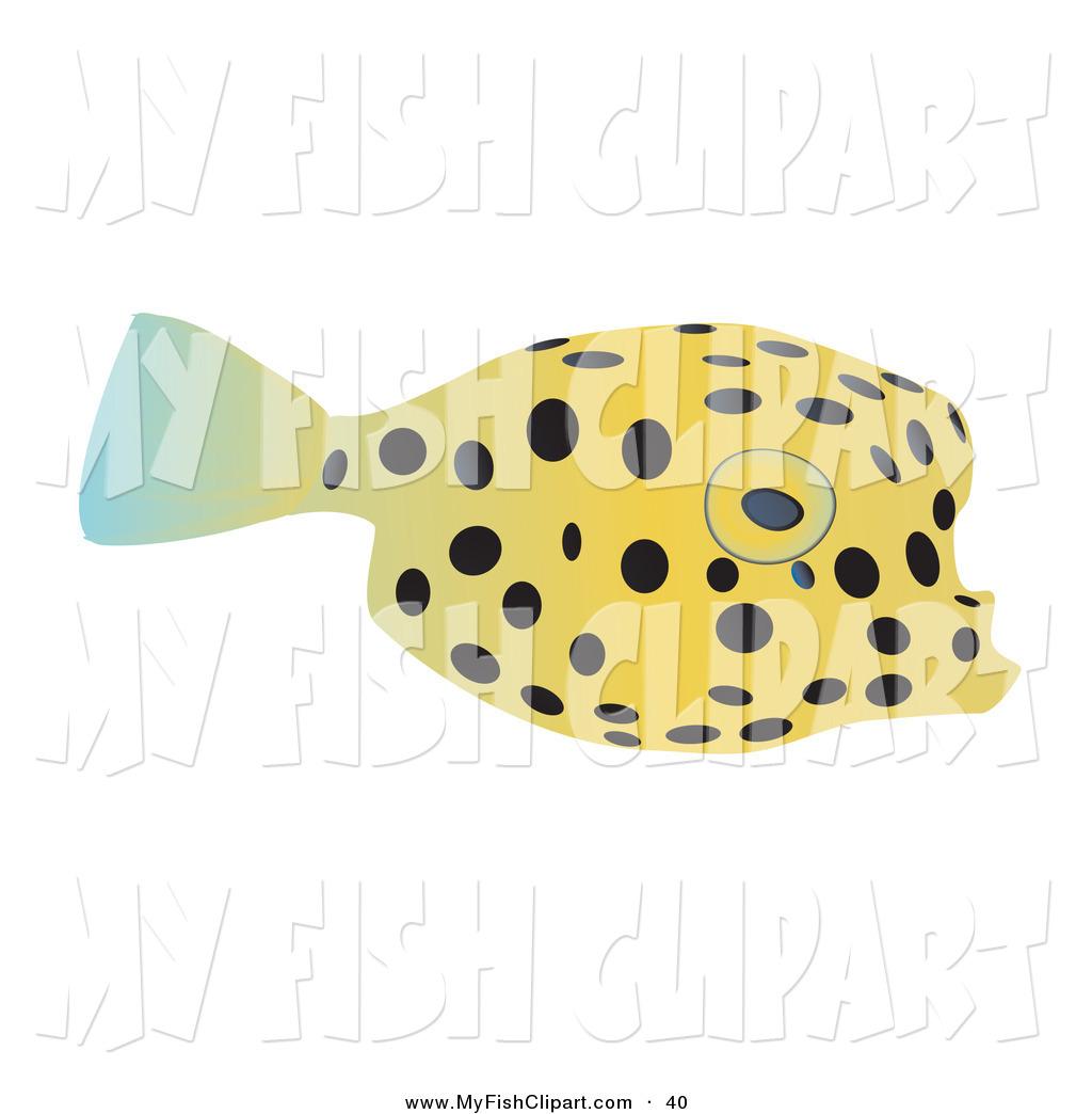 Swell Fish.
