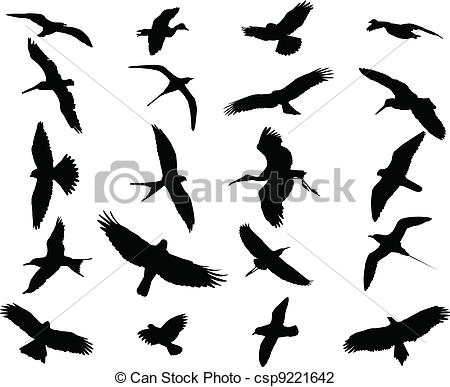 Swift Illustrations and Clip Art. 835 Swift royalty free.