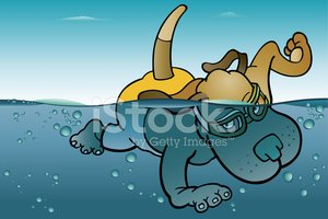 Swimming Dog stock vectors.