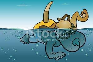 Swimming Dog stock vectors.